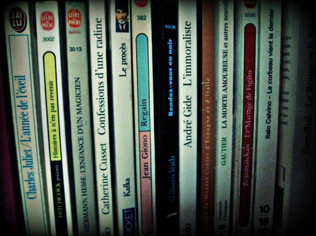 Où trouver des livres en français à Milan?