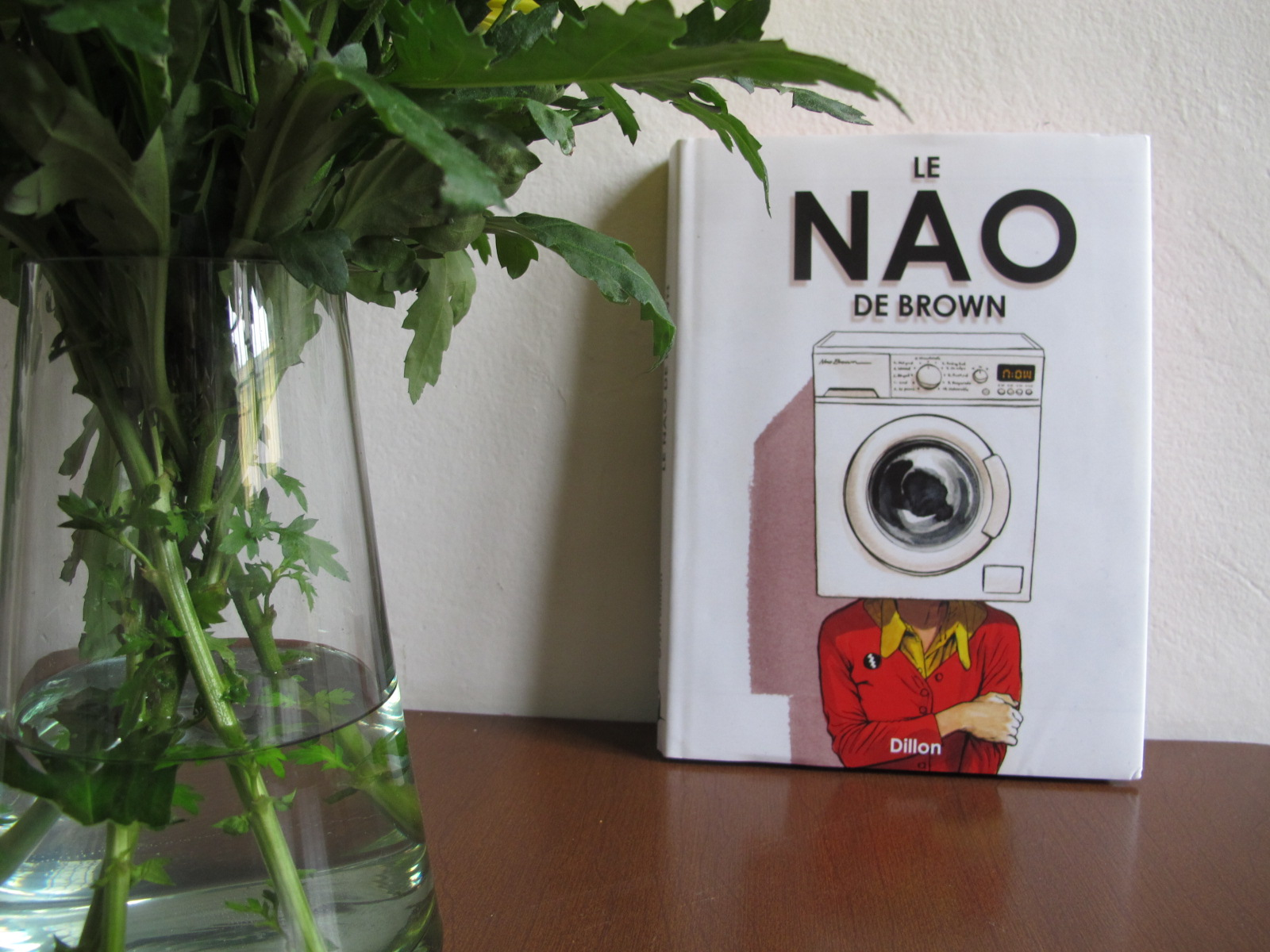 Le NAO de Brown, vous avez dit bizarre (mais d'un beau!)