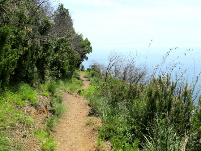 sentier randonnée camogli