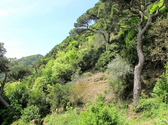 sentier randonnée ligurie
