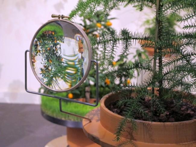 the phytophiler dossofiorito green design