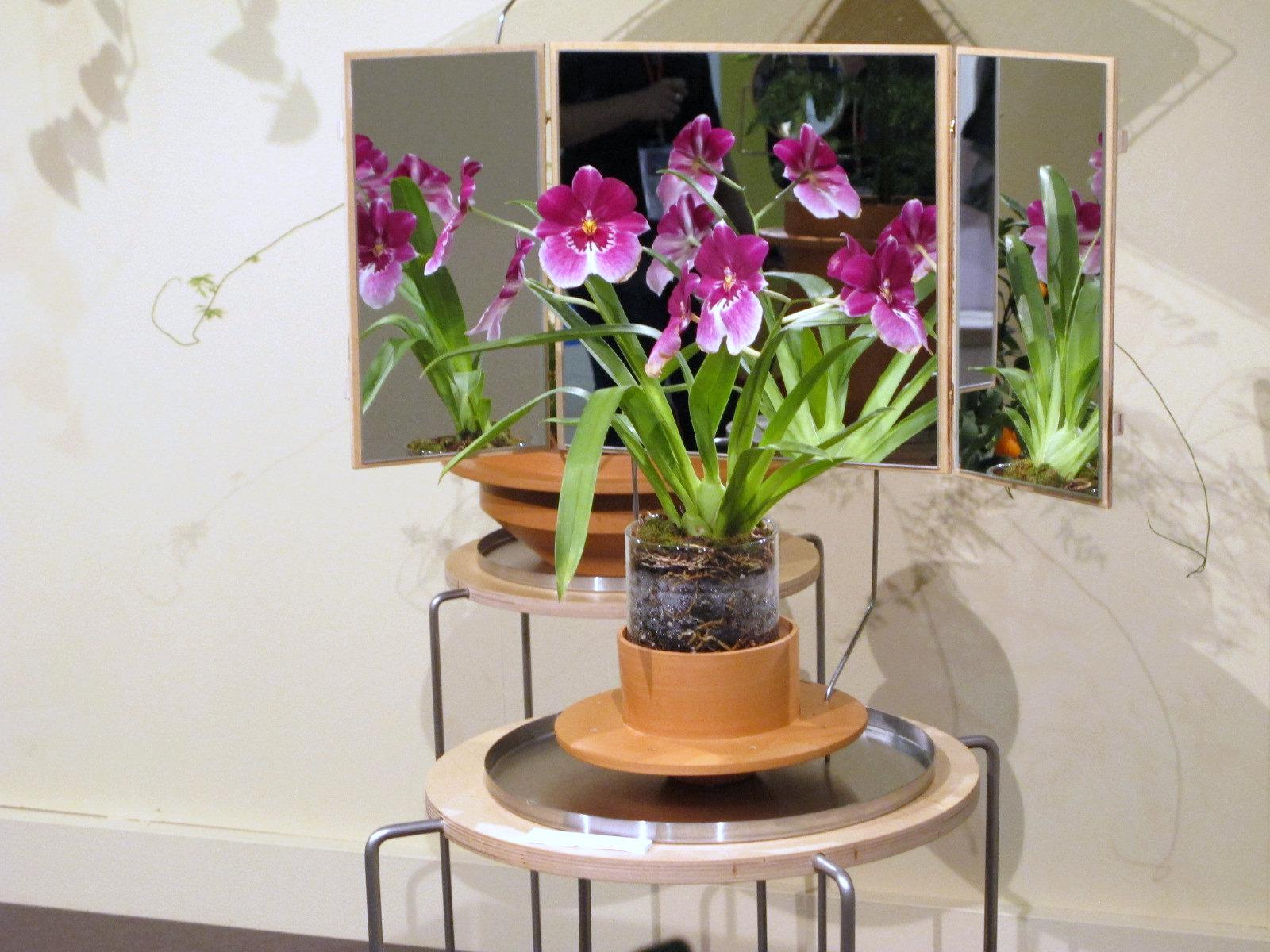Dossofiorito, le design à fleur de pot!