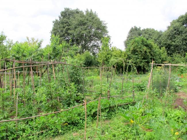 jardin parc paolo pini milan