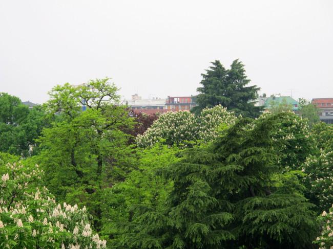 vista terrazza triennale
