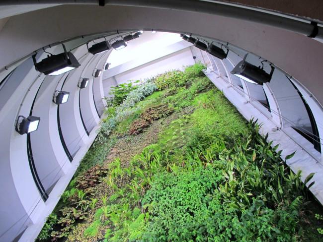 mur végétal parking lyon