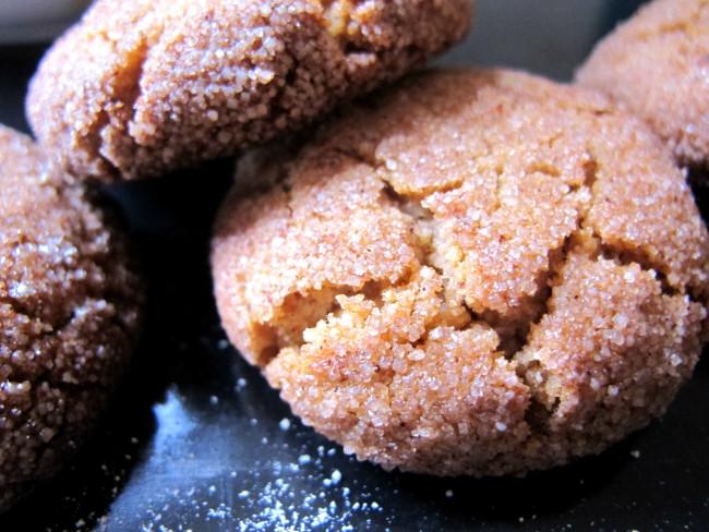 snickerdoodles sans gluten lactose