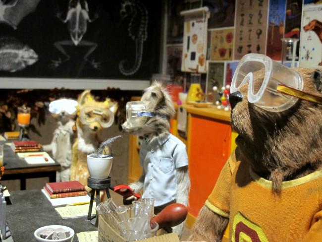 décor laboratoire film animation mr fox