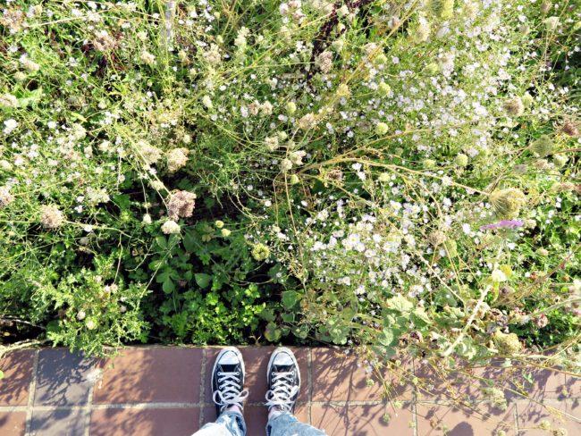 jardinage urbain lyon