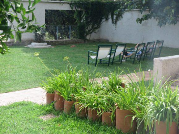 végétation villa noailles