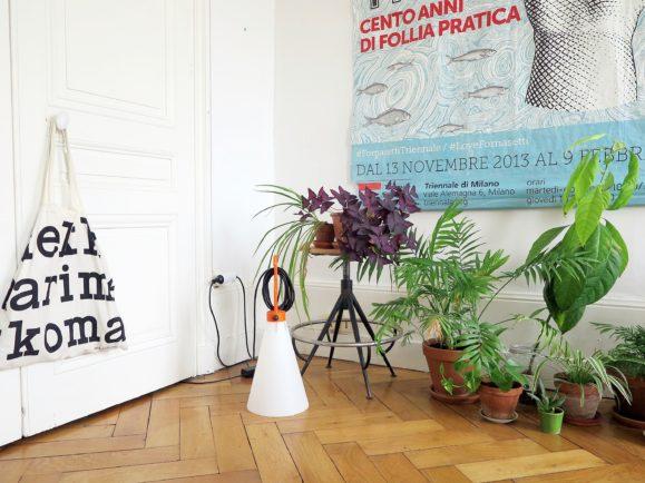 décoration intérieur plantes