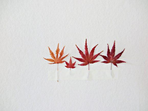 décoration automne minimaliste