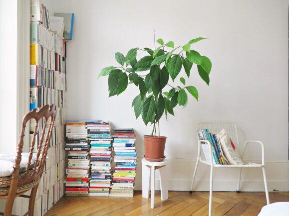 confinement intérieur minimaliste